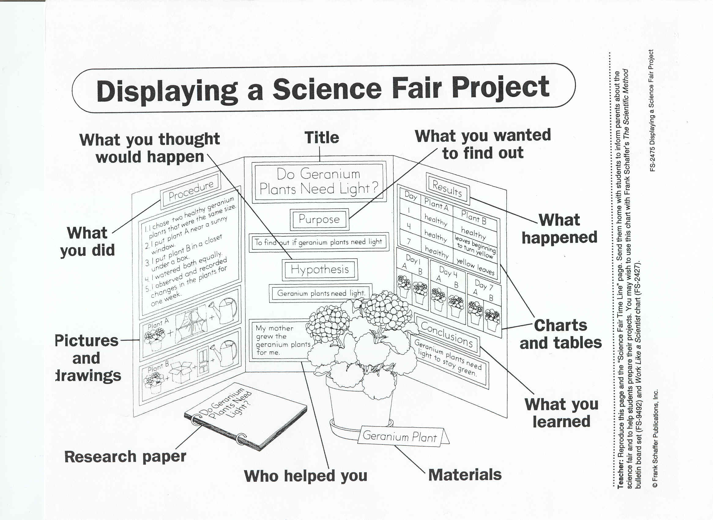 science fair essay layout